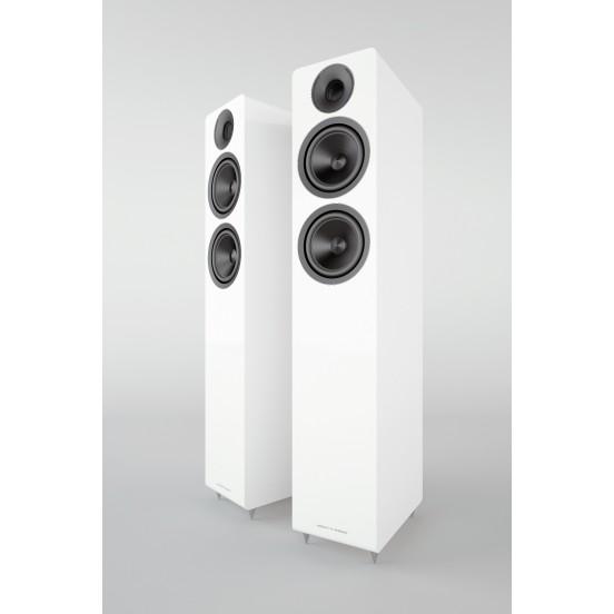 Acoustic Energy AE Colonne 309