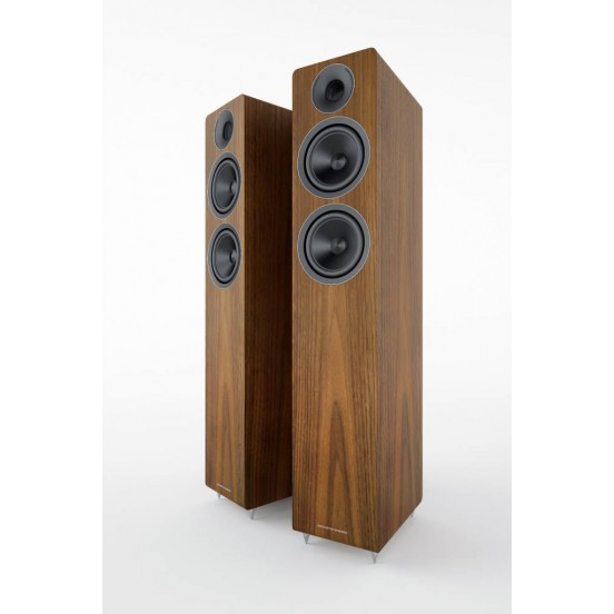 Acoustic Energy AE Colonne 309