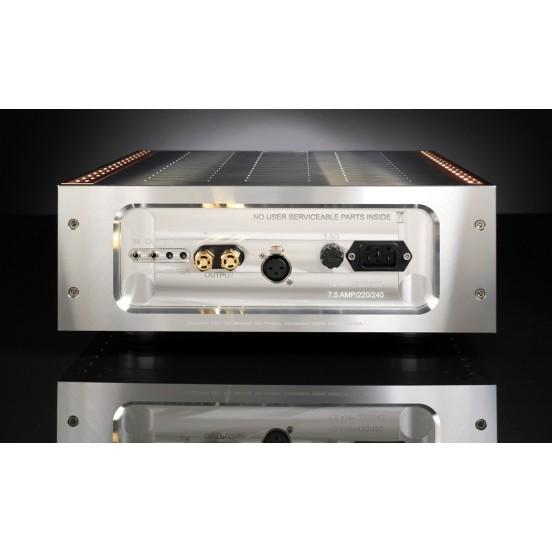 Amplificateur Mono Momentum/M400